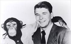 Ronald Reagan and Bonzo