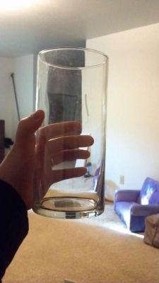 Glass Cylinder Vases $120