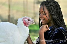 Farm Sanctuary's Celebration for the Turkeys