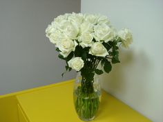 75- Rosas Brancas