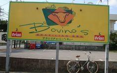 Bovino's Brazilian BBQ...loved the food
