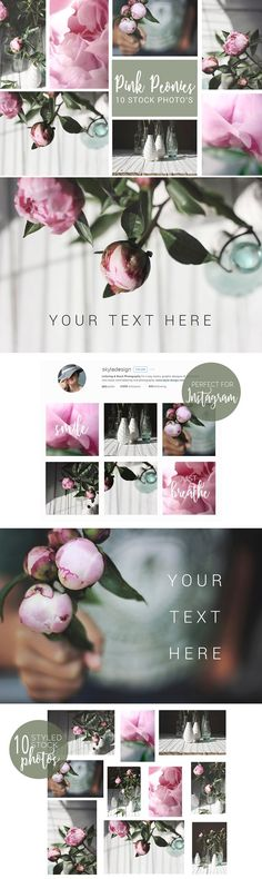 Pink peonies, styled stock photos by Skyla Design on @creativemarket