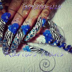 Really really long nails, but cute design Animal Nail Designs, Long Nail Designs, Pretty Nail Designs, Nail Art Designs, Crazy Nails, Fancy Nails, Pretty Nails, Sinaloa Nails, Really Long Nails
