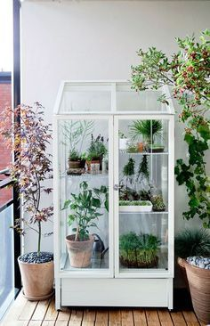 awesome greenhouse love. by http://www.danaz-homedecor.xyz/home-interiors/greenhouse-love/