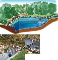 Building a Natural Pool
