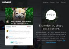 Disqus for Business | CSS Website