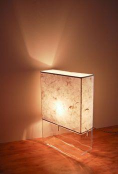 Rectangular Terrarium/ Display Table Lamp by SHareStudios