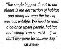 the single threat to our planet steve irwin - WildLife Rules