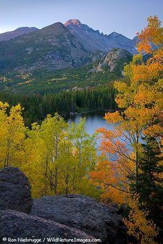 Autumn colors at Bear Lake Rocky Mountain National Park Colorado. Bergen, Rocky Mountains, Colorado Mountains, Beautiful World, Beautiful Places, Beautiful Sky, Autumn Scenery, Photos Voyages, Rocky Mountain National Park