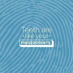 ¿Sabías que... tus dientes son únicos como tus huellas digitales?  Ni siquiera los gemelos idénticos tienen la misma dentadura. ¡Wow!