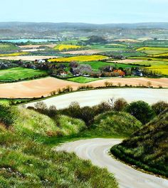 Sussex Springtime