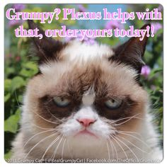 Plexus has been proven to enhance your mood. Don't be like Grumpy here, try Plexus today. http://rebeccarutledge.myplexusproducts.com/