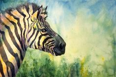 animals zebra watercolour web Zebra Lucinda Hayes