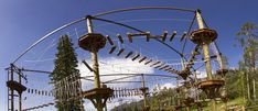 Aerial Adventure Course- Jackson Hole Mntn Resort-$74 (D + adult)