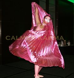 Pink Flamingo Ballet - stunning staged act.   Zoo themed entertainment to hire across the UK inc Manchester, London, Birmingham, Brighton and Wales. www.calmerkarma.co.uk Tel:  020 3602 9540