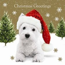 westie puppy at Xmas - Google Search