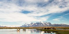 Chilean Patagonia offers exhilarating excursions against an epic backdrop.
