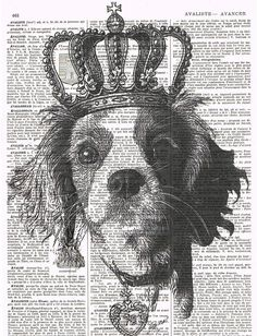 Dog.Cocker Spaniel,Crown,Antique Book Page.King/Queen,animal,French text,Pairs.deal.deco.BIRTHDAY.child.art.pet.mixed media.altered.handmade