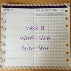 Week 17 Weekly View Before Shot #filofax #diyfish #lifemapping