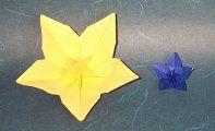 Origami Flower : Floribunda