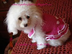 Agulhas Fashion da Patty: Moda Croche PET