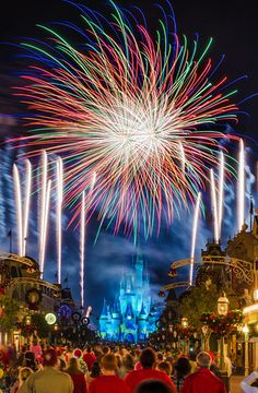 Planning your 2015 Walt Disney World trip can be intimidating, especially for first-timers. This UPDATED guide will give you tips to save money, time, and more!