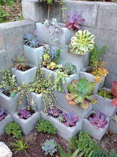 Cinder block succulent garden idea