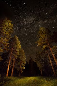 Multiple Firsts | Perseid Meteor Shower and Milky Way