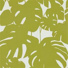 BuyScion Arizona Wallpaper, 111821 Online at johnlewis.com