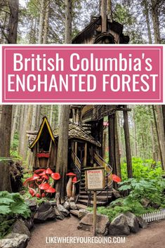 Take a step into the magical world of the Enchanted Forest in BC. Find out why this real life fairy tale is a must visit on any road trip near Revelstoke. Beautiful Places To Travel, Cool Places To Visit, Romantic Travel, British Columbia, Columbia Travel, America And Canada, North America, Canadian Travel, Walking In Nature