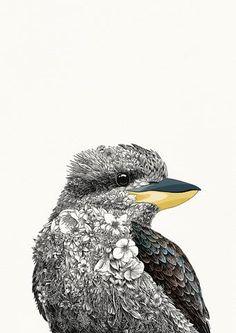 Laughing Kookaburra - Giclée Print – Marini Ferlazzo - Art for Wildlife Illustrations, Illustration Art, Blue Mountains Australia, Australian Animals, Australian Icons, Bird Artwork, Sydney, Aboriginal Art, Wildlife Art