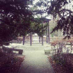 Secret garden in the middle of a big city :) #gdansk #gdanskwrzeszcz #secretgarden #igersgdansk #instagdansk #vscogdansk #fall #ilovefall #ilovemycity #ilovegdn