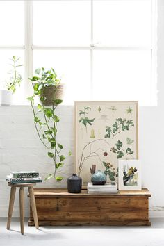 The Colour Library is an innovative new colour trends model for Australian company Haymes paint. Predicting new color trends for White Paint Colors, White Paints, Antique White Usa, Living Room Plants, Living Rooms, Vintage Bathrooms, Interior Paint, Interior Design, Beautiful Interiors