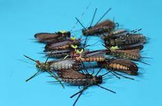 Fly Tying Nation: August 2013