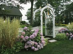 Arbored Entryway with Ornamental Grasses and Blooming Hydrangeas Photographic Print by Darlyne A. Murawski at AllPosters.com