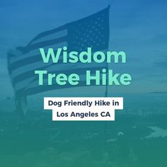 5 Dog Friendly Hikes in Los Angeles California. Hiking's are a fantastic means to hang out with your pooch. These are little suggestion before dog hike. Places In California, California Travel, Northern California, Hiking Dogs, Hiking Gear, Hiking Trails, Travel Essentials, Travel Tips, Hikes In Los Angeles