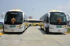 Autobuses sur región villahermosa