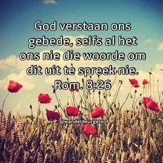 God hoor ons gebede Prayer Verses, Scripture Quotes, Bible Verses, Scriptures, Great Quotes, Me Quotes, Inspirational Qoutes, Afrikaans Quotes, Special Words