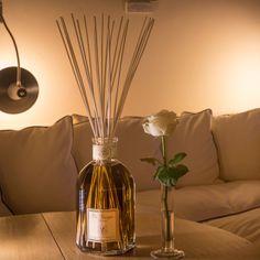 Dr. Vranjes - Livingroom