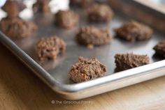 Clean Eating Grain Free Spice Cookies  (For Little Ones)