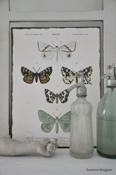like the butterfly display and the glass bottles....I feel like I need a glass something in my room...