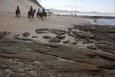A beach near Cintsa in the Eastern Cape. The Eastern Cape is famous for its beautiful beaches Provinces Of South Africa, Beach Rides, Countries Of The World, Horse Riding, Beautiful Beaches, 6 Years, Wonders Of The World, Tourism, Coastal