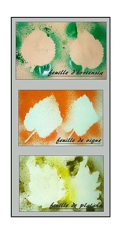 Collage de feuilles diverses (avec patafix) et peinture au pulvérisateur puis on retire les feuilles