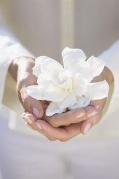 Get yourself some tiare tea. Oils found in the Tiare (gardenia) flower prevent or reduce dryness and flaking and soothes skin.