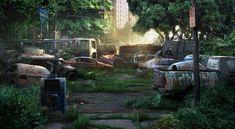 The Last of Us - Street Cars