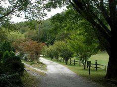 Panther Ridge Campground at Lake Toxaway, North Carolina