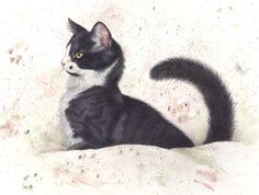 Franciens katten zitten nu ook op https://www.facebook.com/FranciensKatten  Drawing by francien van westering