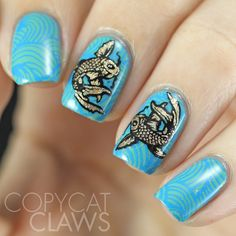 Copycat Claws: Bundle Monster Around The World BM-XL155 Review