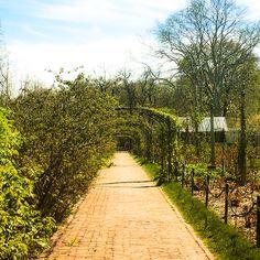 Botanical Gardens NY
