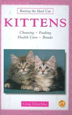 Kittens (Raising the Ideal Cat) by Greg Ovechka * You can get additional details at the sponsored image link. Cat Health Care, Alternative Treatments, Cat Grooming, Dental Care, Raising, Cats And Kittens, Image Link, Animals, Animales